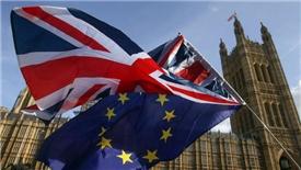 """Chủ tịch Hội đồng châu Âu: """"EU không muốn một bức tường với Anh"""""""