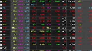 Chứng khoán ngày 19/6: Dòng tiền bắt đáy giúp VN-Index hãm đà lao dốc