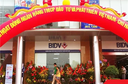 Lợi nhuận trước thuế của BIDV đạt 8.800 tỷ đồng