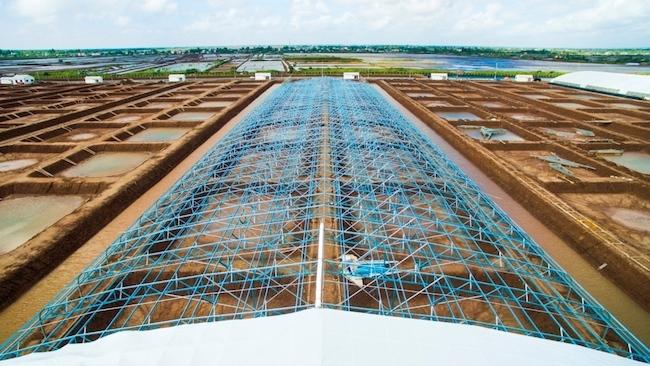 Nguyễn Quốc Phong 'trúng tuyển' tham quan trang trại công nghệ cao