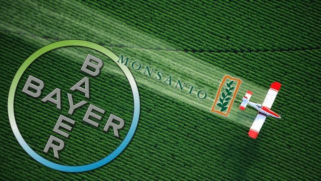 Bayer thâu tóm Monsanto, ngành nông nghiệp toàn cầu sẽ ra sao?