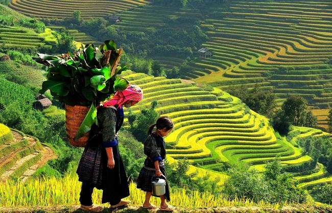 """Cựu giảng viên đại học Oxford """"nghiện"""" thiên nhiên và con người Việt Nam"""