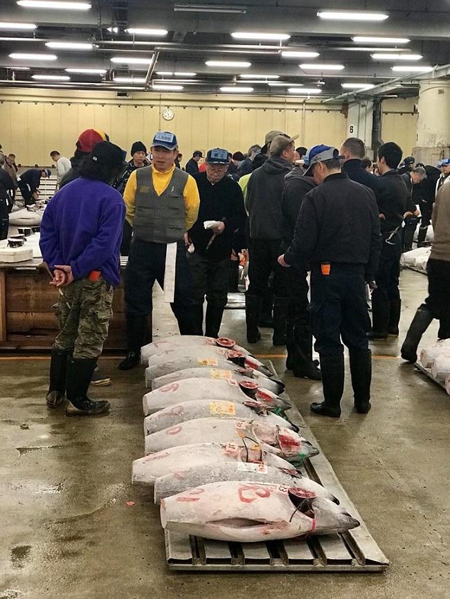 Nhộn nhịp phiên chợ đấu giá cá ngừ lớn nhất thế giới 3