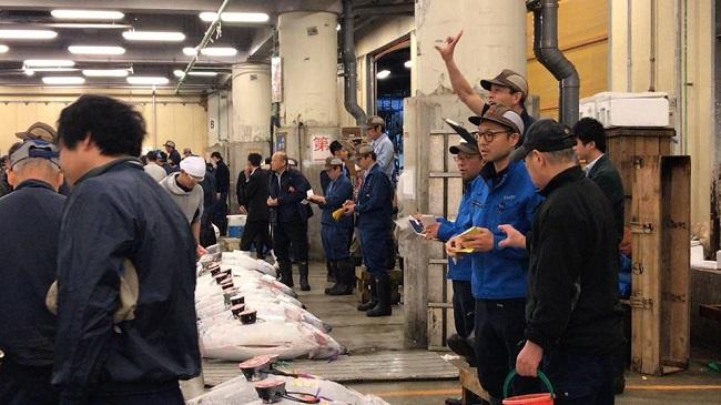Nhộn nhịp phiên chợ đấu giá cá ngừ lớn nhất thế giới 5