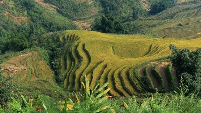 Đâu là những địa điểm đẹp nhất Việt Nam? 2