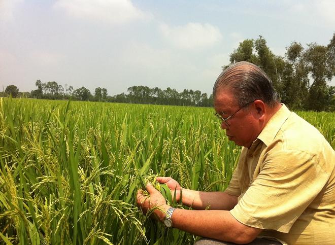 Giáo sư Võ Tòng Xuân: Tư duy và định hình lại cách thức phát triển Đồng bằng sông Cửu Long 2