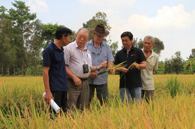 Giáo sư Võ Tòng Xuân: Tư duy và định hình lại cách thức phát triển Đồng bằng sông Cửu Long 3