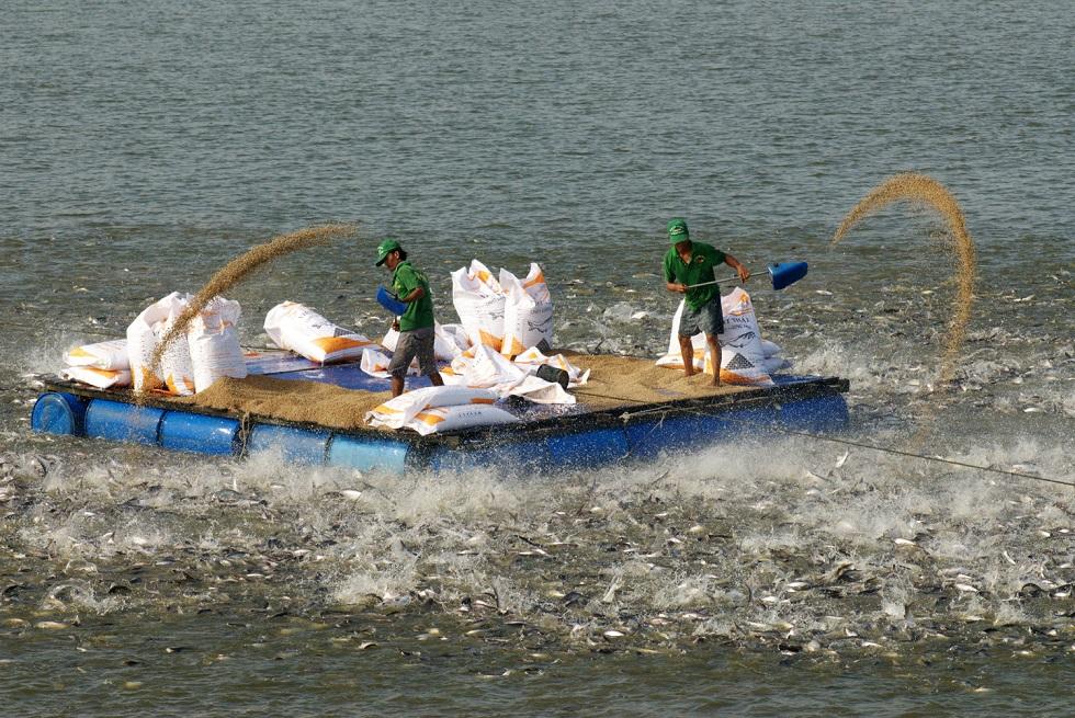 Giáo sư Võ Tòng Xuân: Tư duy và định hình lại cách thức phát triển Đồng bằng sông Cửu Long 1
