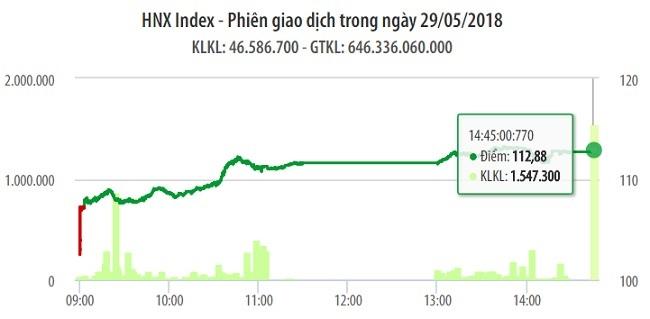 Chứng khoán ngày 29/5: Cổ phiếu ngân hàng dẫn dắt VN-Index vớt đáy hơn 20 điểm 1