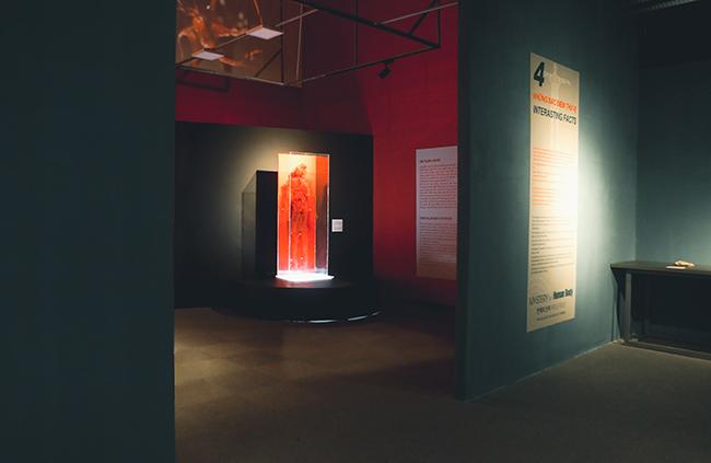 """Khám phá """"Sự bí ẩn đặc biệt của cơ thể người"""" đầu tiên tại Việt Nam 10"""