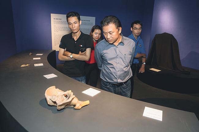 """Khám phá """"Sự bí ẩn đặc biệt của cơ thể người"""" đầu tiên tại Việt Nam 3"""