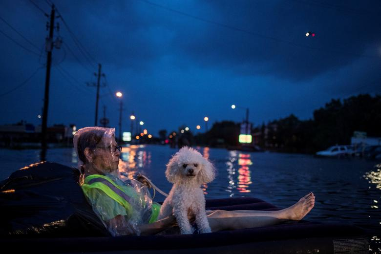 Những thảm họa thiên nhiên tàn khốc năm 2017 5