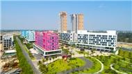 Cocobay, condotel, căn hộ khách sạn, cam kết lợi nhuận