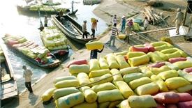 Cảnh báo các doanh nghiệp Việt khi xuất khẩu nông sản sang Tây Ban Nha