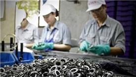 Việt Nam rất dễ rơi vào 'bẫy tăng trưởng đi ngang'