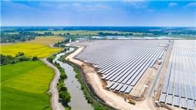 Tập đoàn Thái Lan đầu tư vào 3 dự án điện mặt trời tại Việt Nam