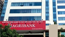 Triển khai các bước cổ phần hóa Agribank