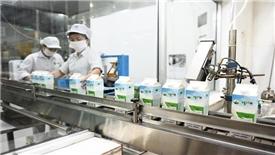 Mộc Châu Milk: Tận dụng ưu thế từ chuỗi sản xuất khép kín để tăng trưởng