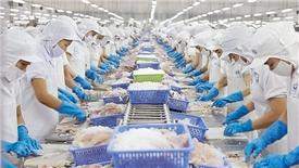 Tận dụng FTA giúp cá tra Việt xuất khẩu thuận lợi vào ASEAN