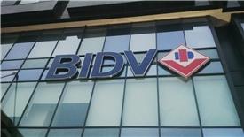 Nợ có khả năng mất vốn của BIDV vượt 12.000 tỷ đồng