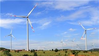 Điện gió ngoài khơi sẽ 'cất cánh', dẫn đầu bởi châu Á – Thái Bình Dương
