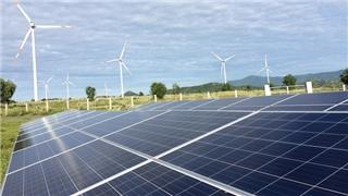Sản lượng điện mặt trời tăng mạnh