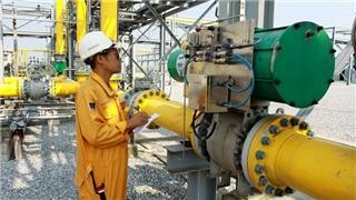 Hoa Kỳ tài trợ 1,4 triệu USD cho EVN nghiên cứu điện khí miền Nam
