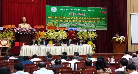 Tập đoàn Cao su Việt Nam đặt mục tiêu lợi nhuận 6.600 tỷ đồng năm 2019