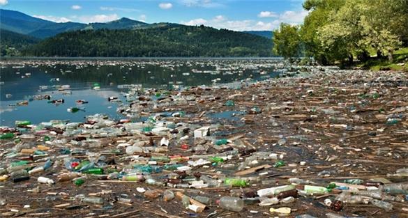 Ô nhiễm nước từ nạn xả thải