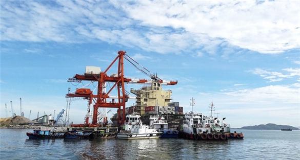 VAFI: Cảng Quy Nhơn nên học theo mô hình Cảng Lạch Huyện, không thể dựa vào Vinalines