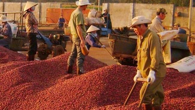 Chiến lược nào để nông sản Việt chinh phục thị trường Hàn Quốc?