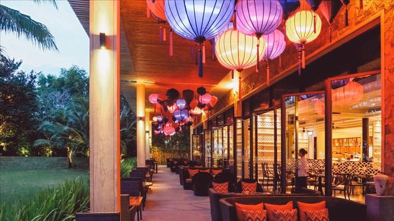 Những điểm du lịch ngày càng hấp dẫn tại Việt Nam