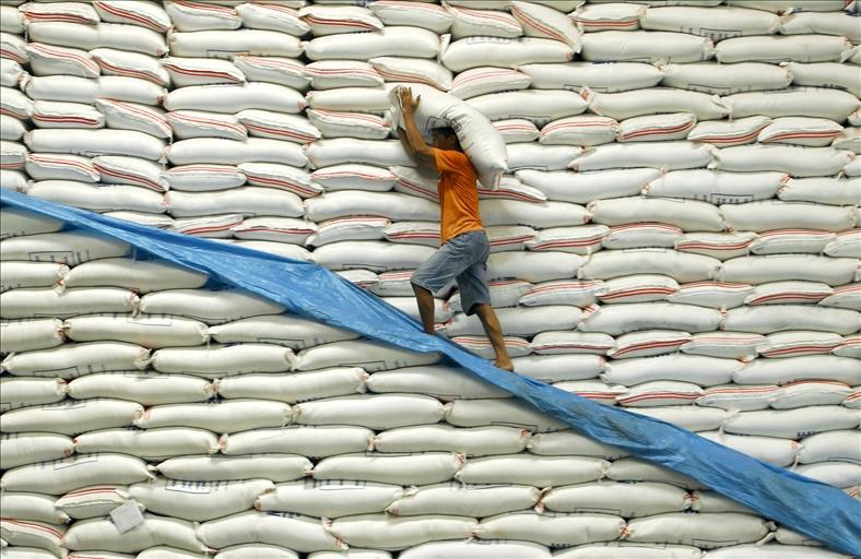 Giá gạo Việt Nam lên cao nhất 11 tháng