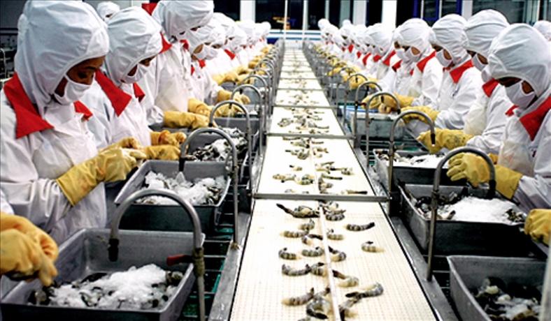 Thuế nhập khẩu nhiều sản phẩm tôm Việt Nam vào EU sẽ về mức 0%
