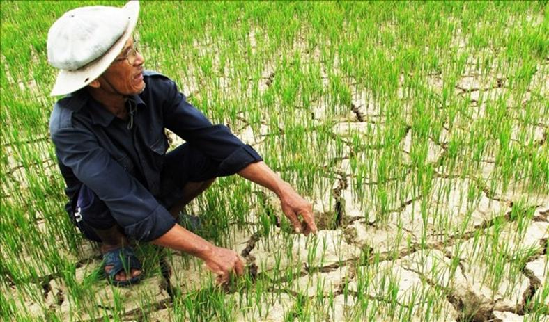 Việt Nam là quốc gia đầu tiên IPCC giới thiệu Báo cáo 1,5 độ C
