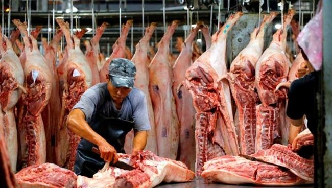 Thủ tướng: 'Chống dịch tả lợn châu Phi như chống giặc'
