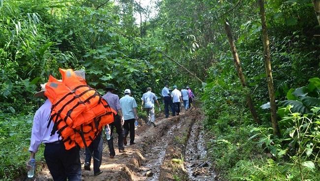 Quảng Ngãi: Mất cả nghìn ha rừng tự nhiên vì… xác định nhầm!