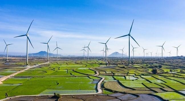 Đến lượt Quảng Trị xin lùi thời hạn áp dụng giá FIT điện gió