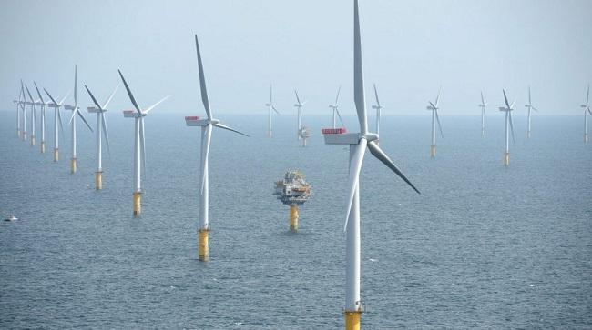 Nhiều quan ngại về các dự án điện gió ngoài khơi tỷ đô