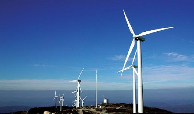 Giữa dịch Covid, nhiều dự án điện gió ở Quảng Trị vẫn quyết thi công để kịp hưởng giá FIT