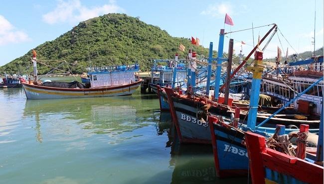 Bình Định đề nghị loại 2 cảng biển khỏi quy hoạch quốc gia