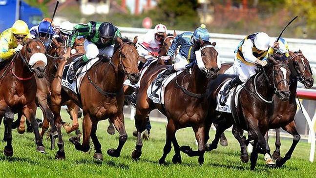 'Nút thắt' khó cởi ở trường đua ngựa 420 triệu USD