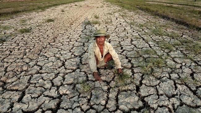 Chiến lược mới cho đồng bằng sông Cửu Long ứng phó với biến đổi khí hậu