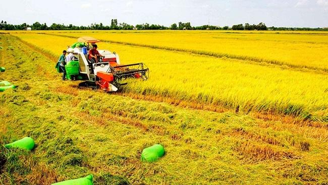 Ứng dụng công nghệ 4.0 vào sản xuất nông nghiệp bền vững