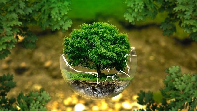 Covid-19 thúc đẩy tiêu dùng, đầu tư bền vững