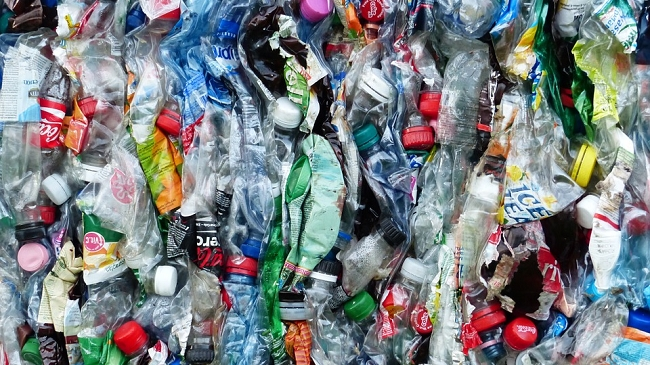 Đề xuất giãn thời hạn thực thi trách nhiệm thu gom, tái chế bắt buộc