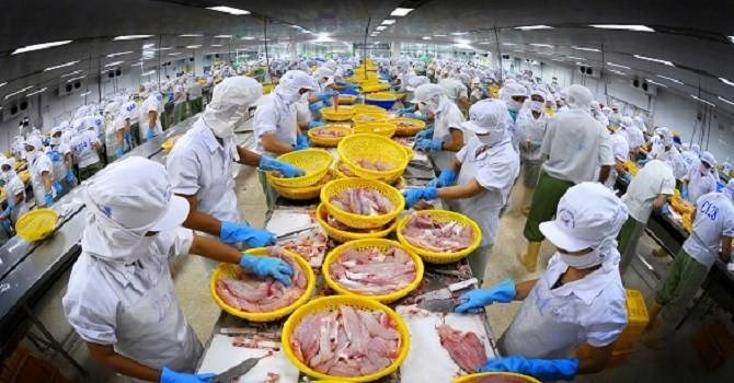 Thủy sản Vĩnh Hoàn bị Mỹ áp thuế chống bán phá giá