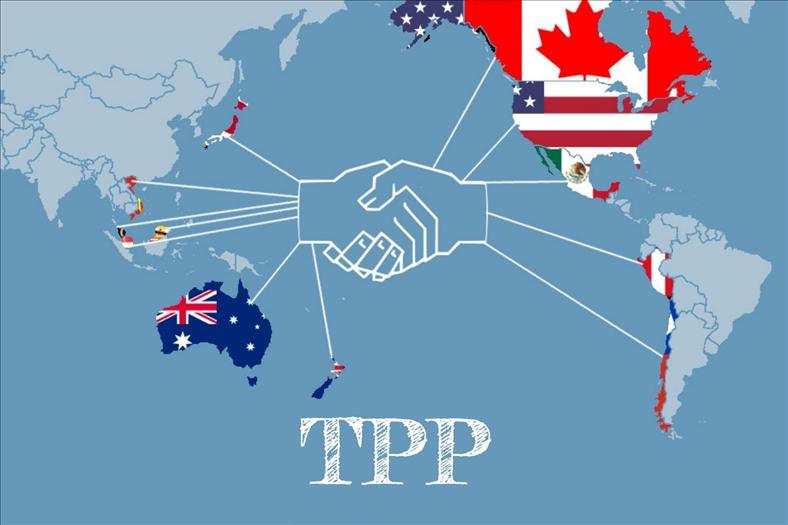 Cơ hội thông qua TPP tại APEC Việt Nam là 50/50
