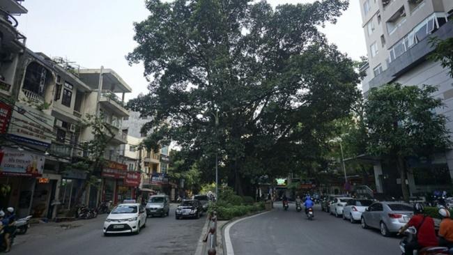Hà Nội duyệt kế hoạch mở rộng đường Vũ Trọng Phụng, quận Thanh Xuân