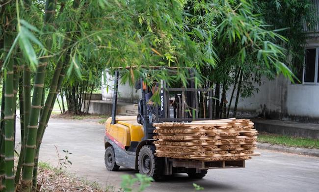 Chuyên gia tư vấn tài chính 8x khát khao nâng tầm cây tre Việt